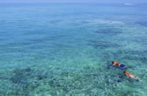 Atrévete con estos 5 deportes acuáticos este verano