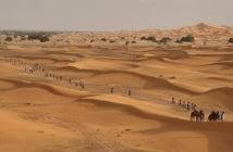 TITAN DESERT by Garmin, el sueño del desierto